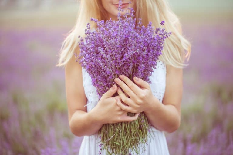 Stop hay fever in its tracks