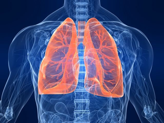 New study investigating lung treatment for Covid-19